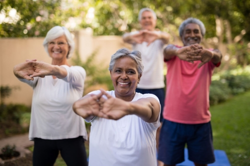 Active Living for Older Adults